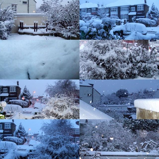more-snow1