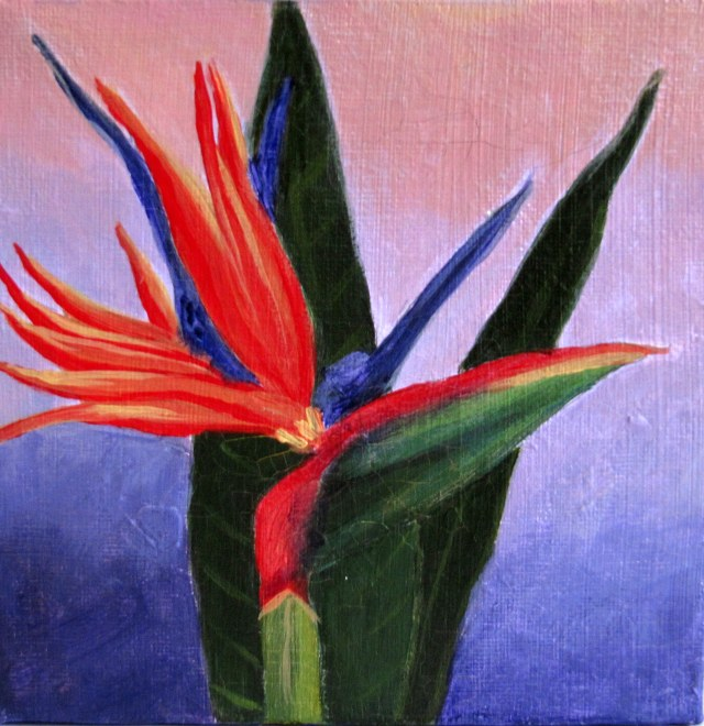 Bird of Paradise - Acrylic on canvas - 6x6""
