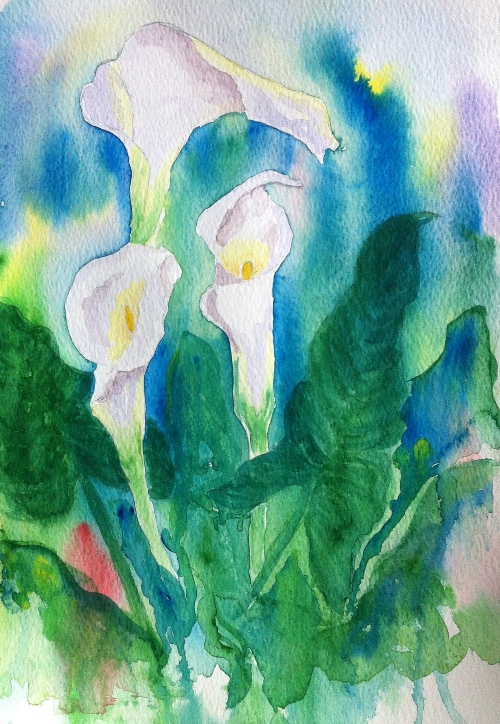 Calla Lilies - Watercolor on Paper-A4