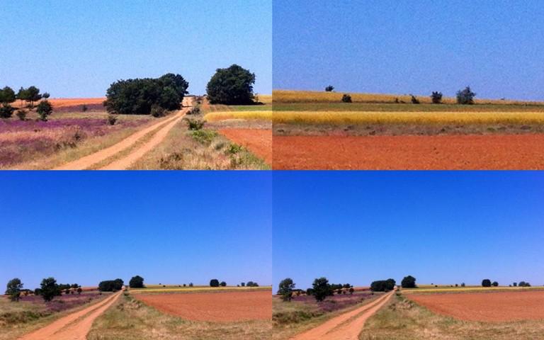 Landscapes to Paint