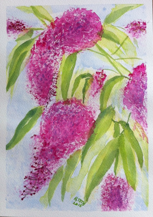Buddleias - Watercolor on Bockingford Paper - A4