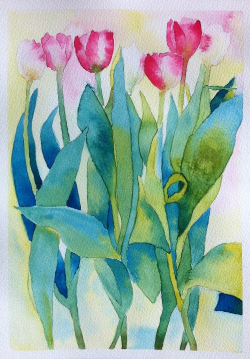 Pink and White Tulips - A4 - Watercolor on Bockingford