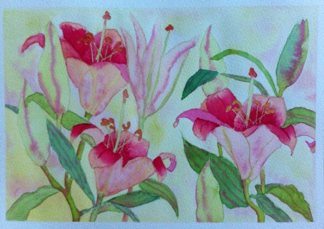 Lillies - Watercolor on Bockingford - A4